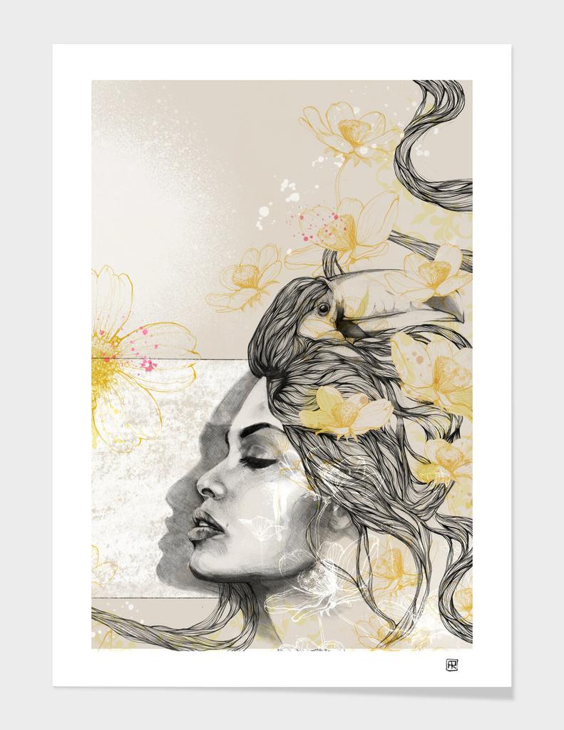 Tucan love main illustration