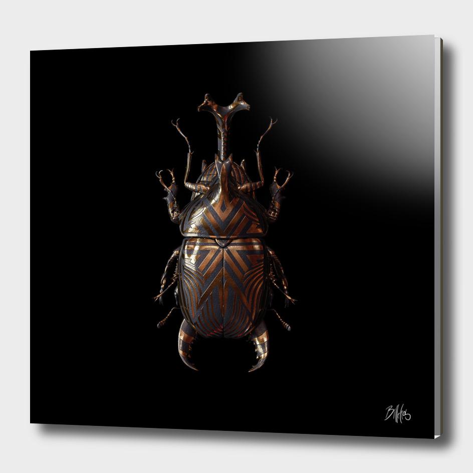 Engraved Entomology A
