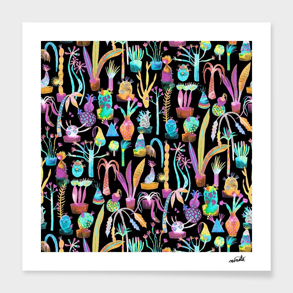 Multicolored lush garden