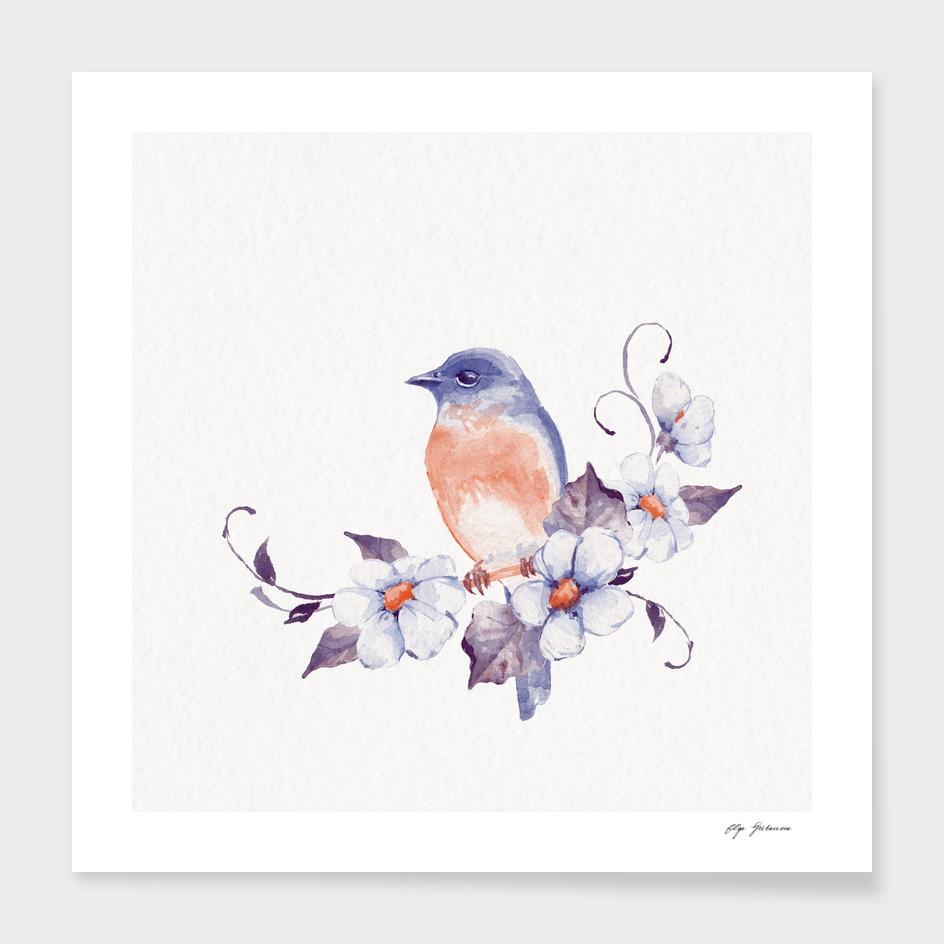 Bird and flowers main illustration