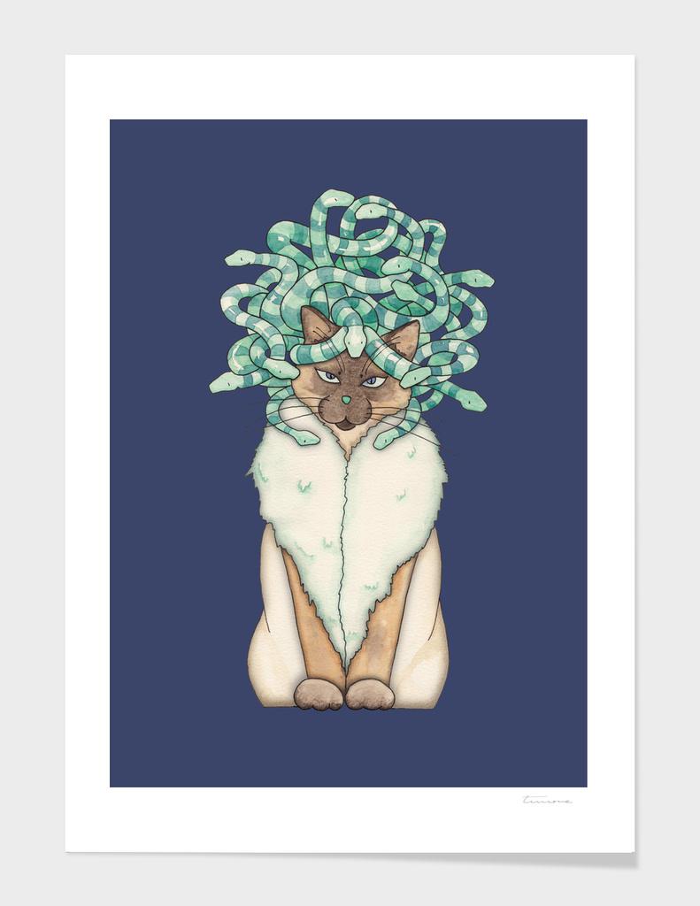 Medusa Cat
