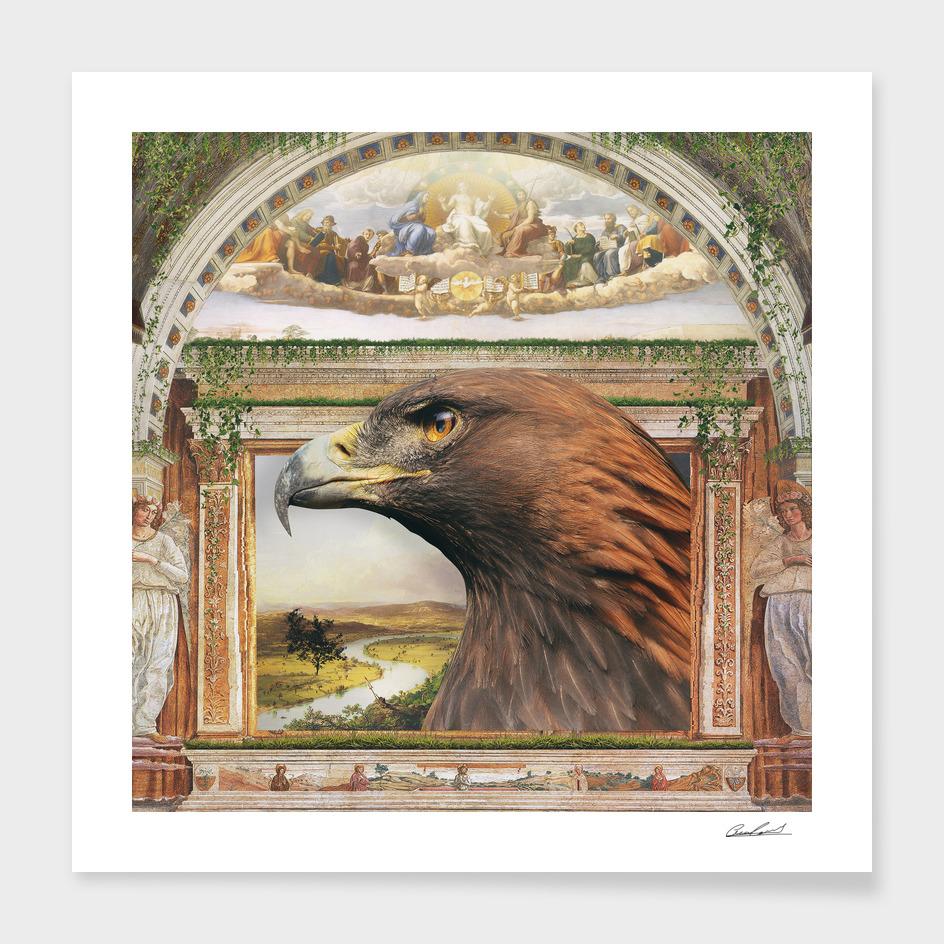 Aquila main illustration