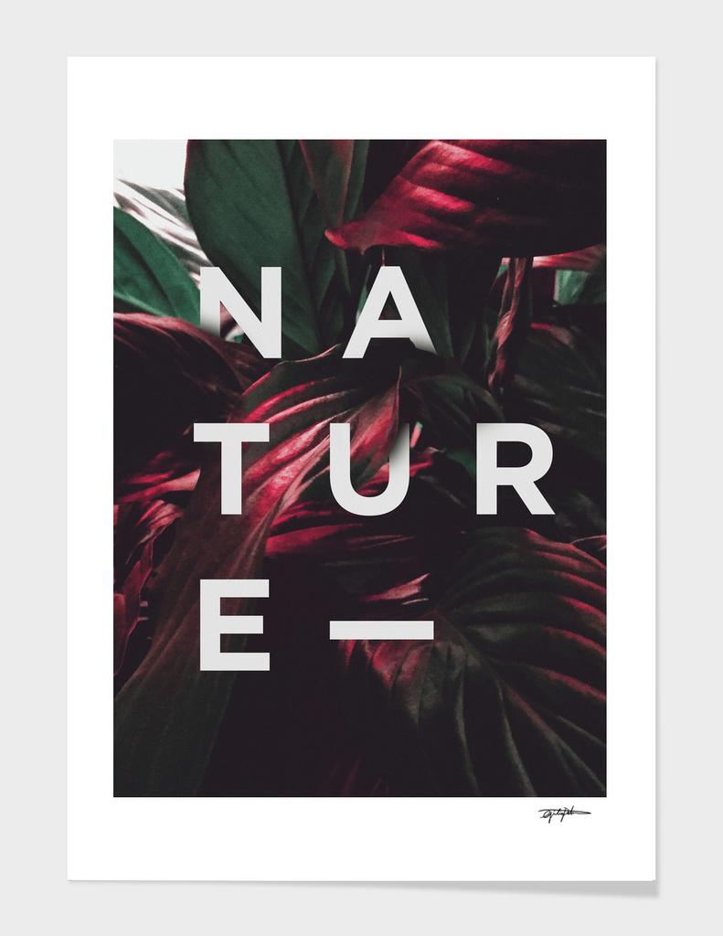 Nature main illustration