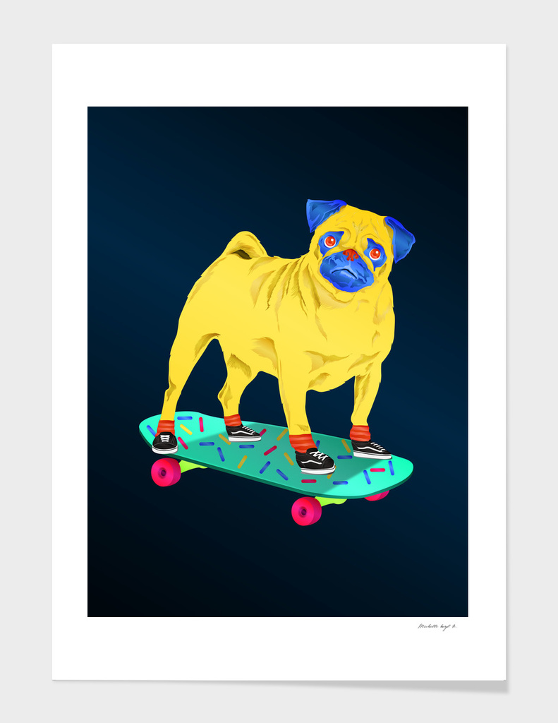 Skater Pug main illustration