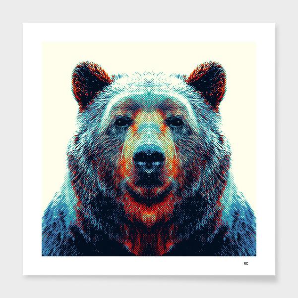 Bear - Colorful Animals main illustration