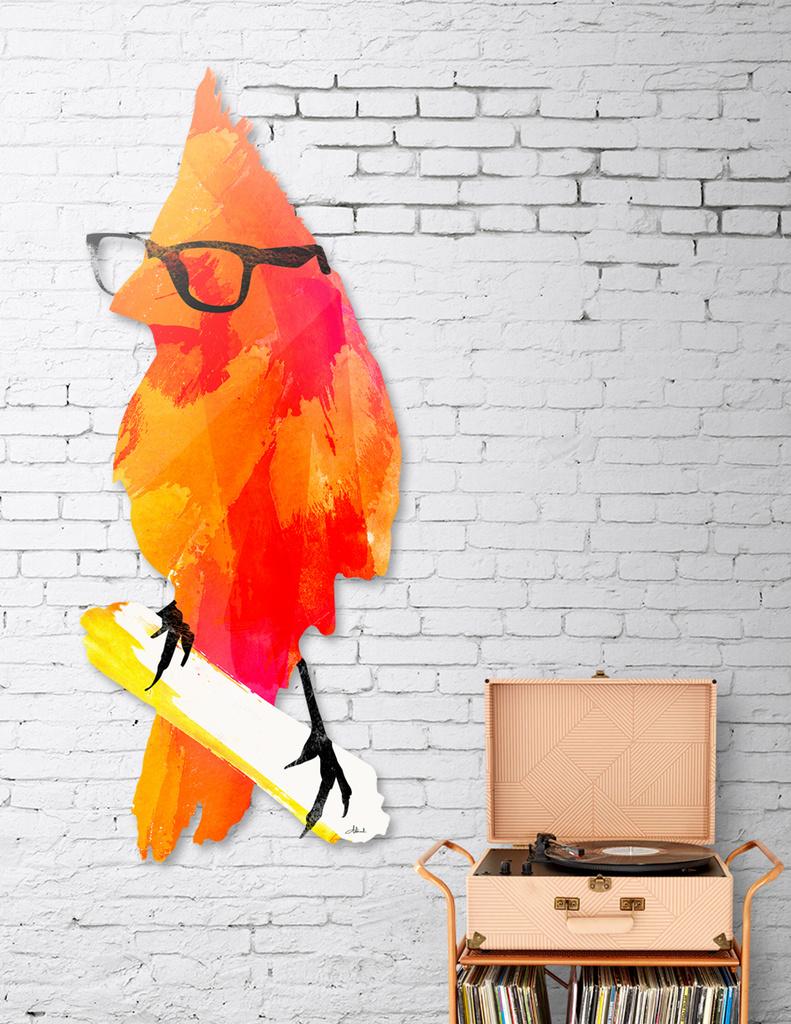 Punk bird main illustration