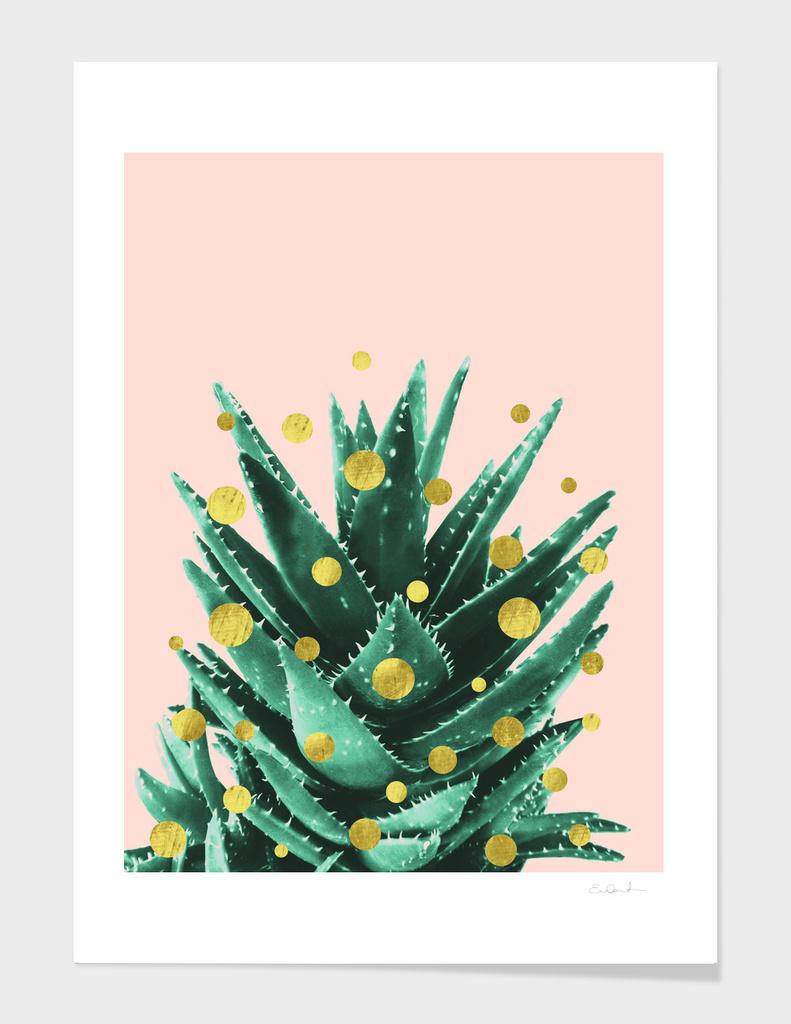 Christmas Succulent main illustration