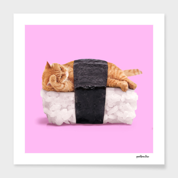 SUSHI CAT main illustration
