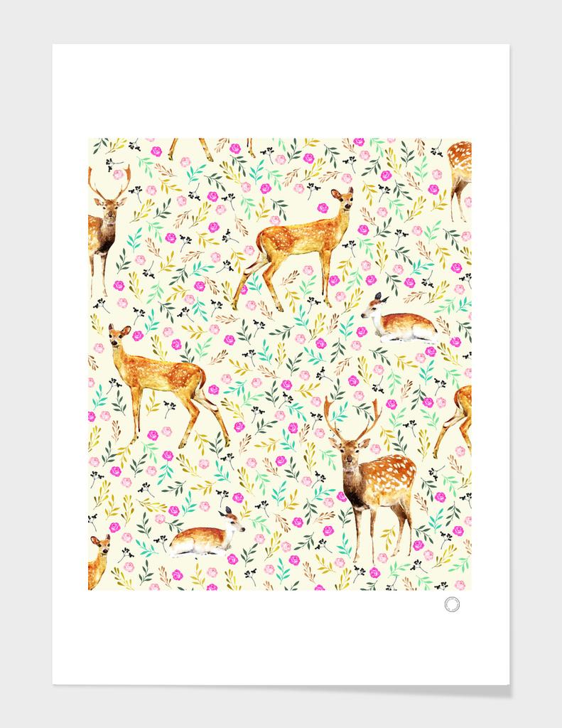 Deers main illustration