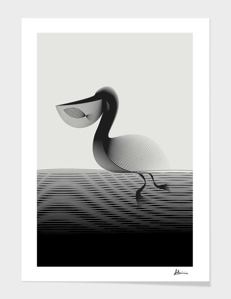 Pelican main illustration