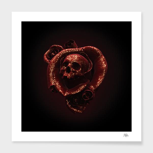 Cranium Rosa I main illustration