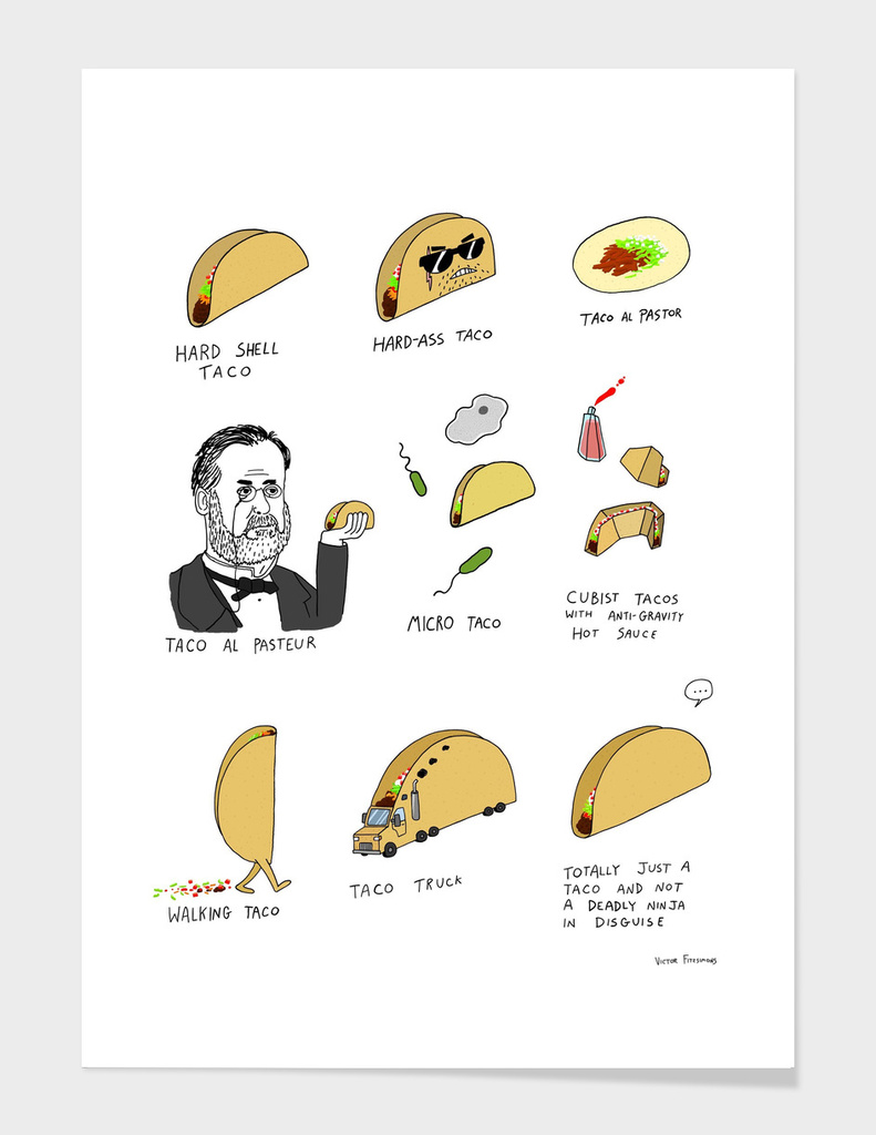 A misguided guide to tacos