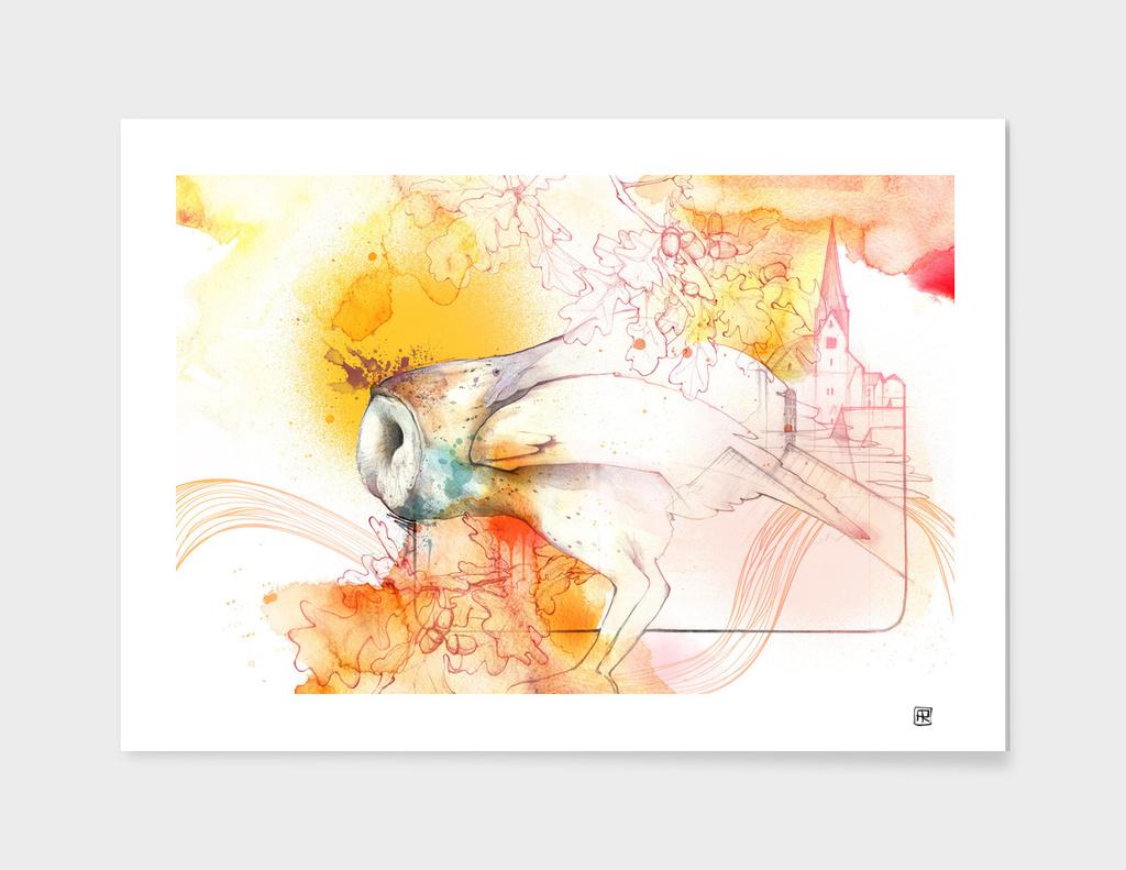 Owl main illustration