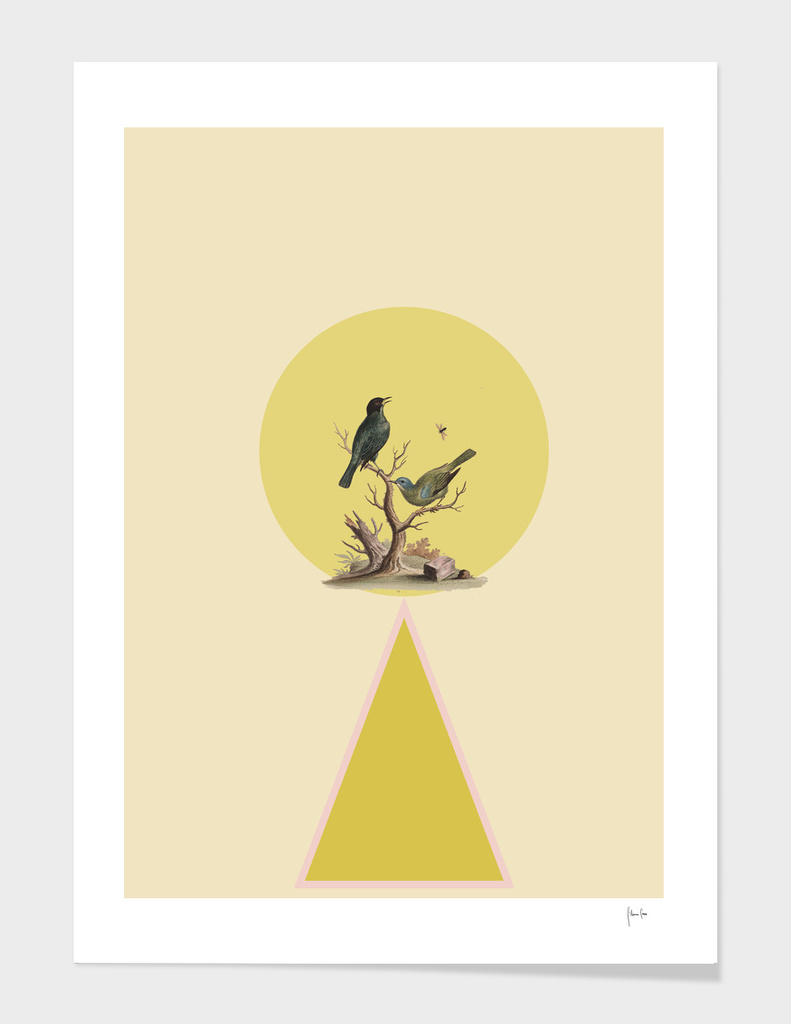 Bird in yellow circle