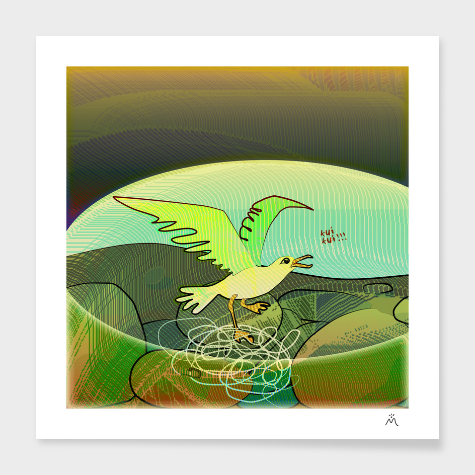 Birds / Seagull / Trapped main illustration