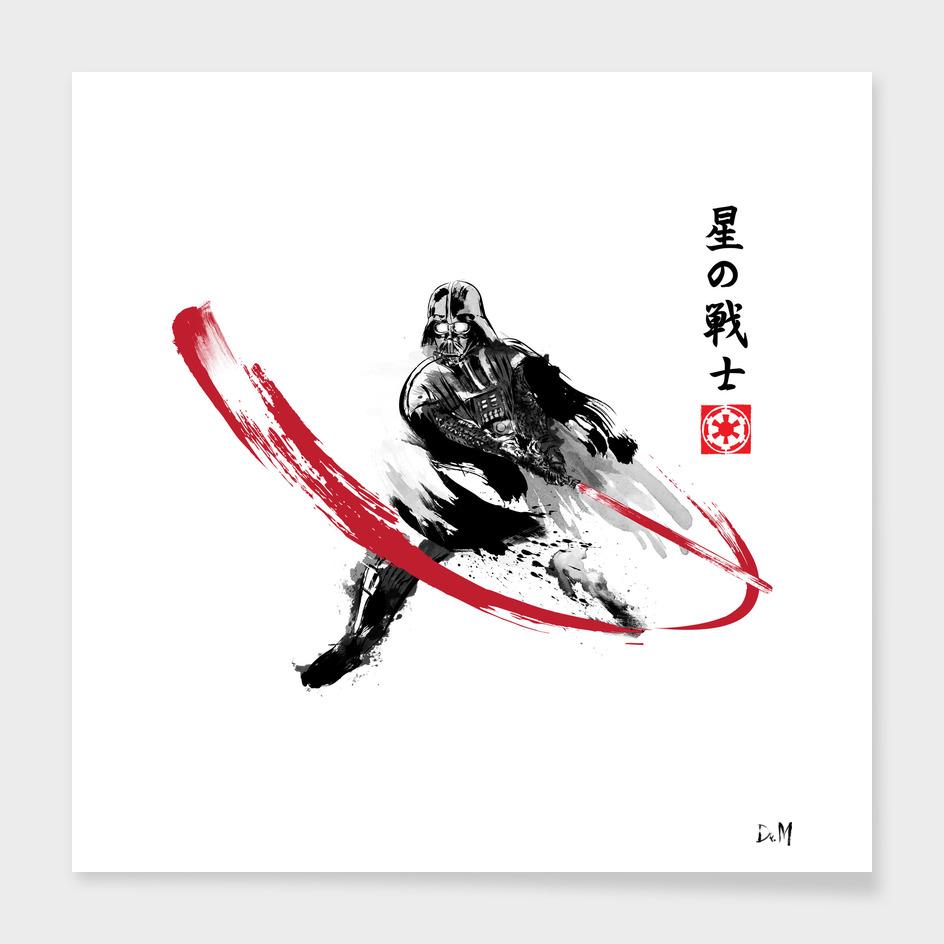 Star Warrior Sumi-e main illustration