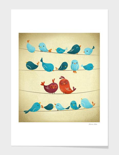 Birds main illustration