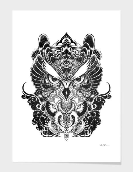 Owl and Dragon main illustration