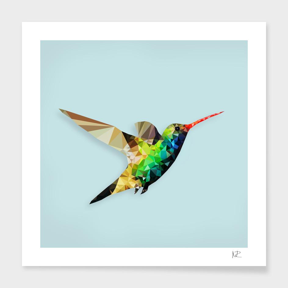 Polygon Hummingbird