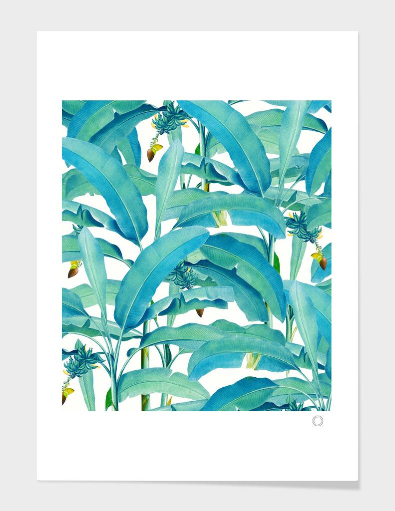 Banana Forest main illustration