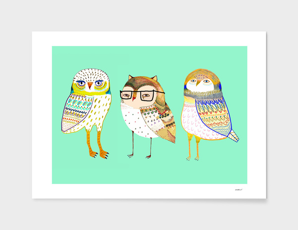 owls main illustration