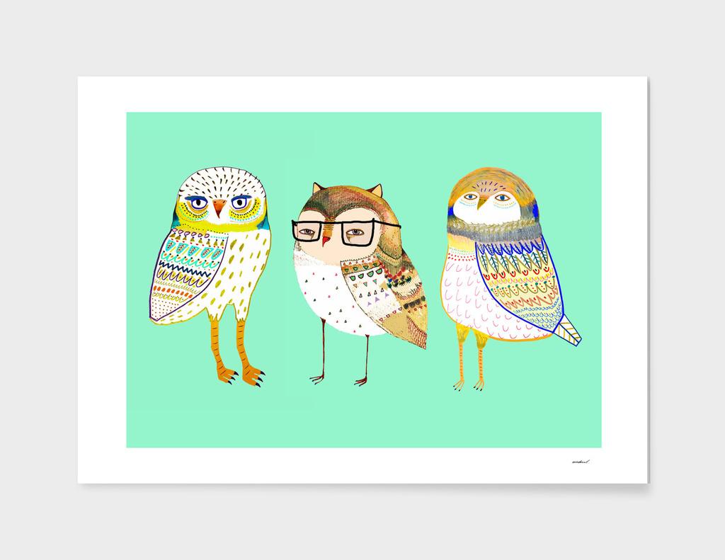 owls main illustration