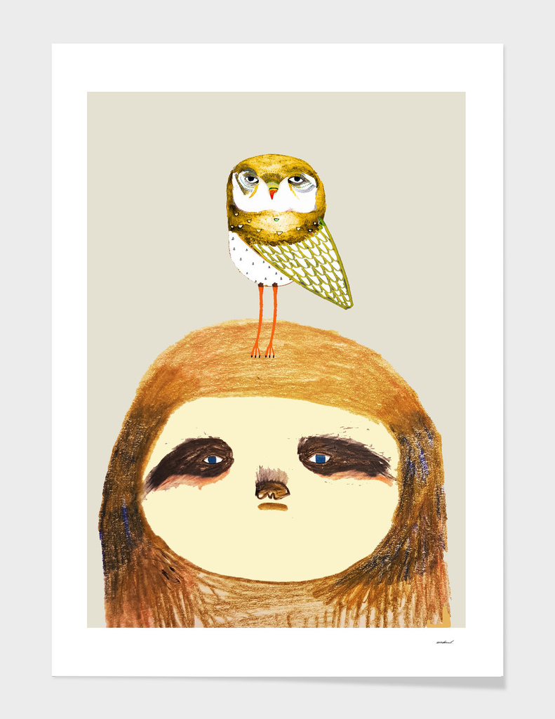 sloth and owl main illustration