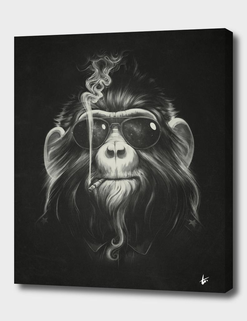 Smoke 'em if you got 'em
