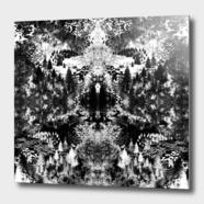 Aluminum Print