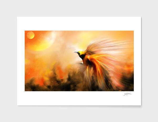 Phoenix main illustration