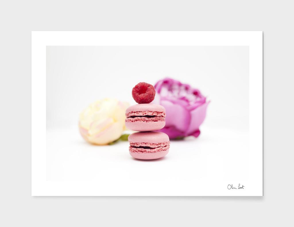 Pink macarons main illustration