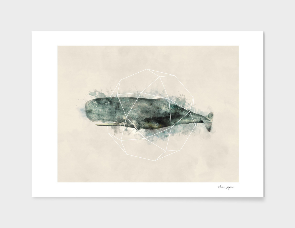 Geo Whale Watercolor
