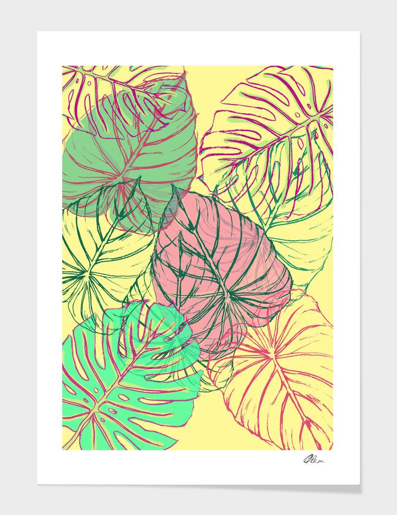Jungle leaves main illustration