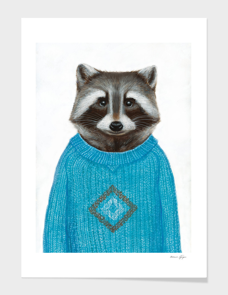 Raccoon wearing a pullover main illustration