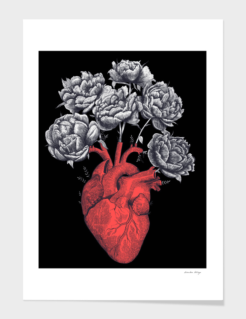 Heart with peonies on black main illustration