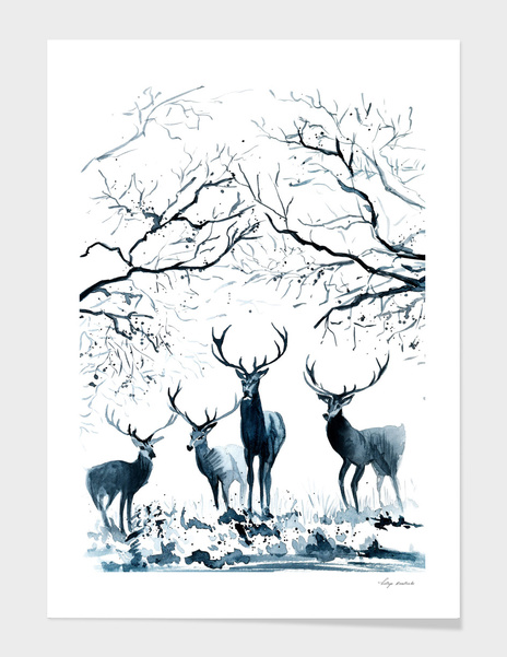 Deer in the forest main illustration