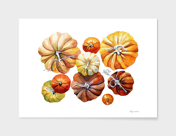 pumpkins main illustration