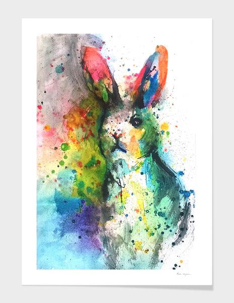 Bunny Splash main illustration