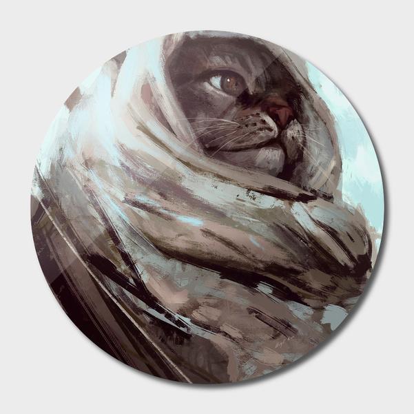 Cat warrior main illustration