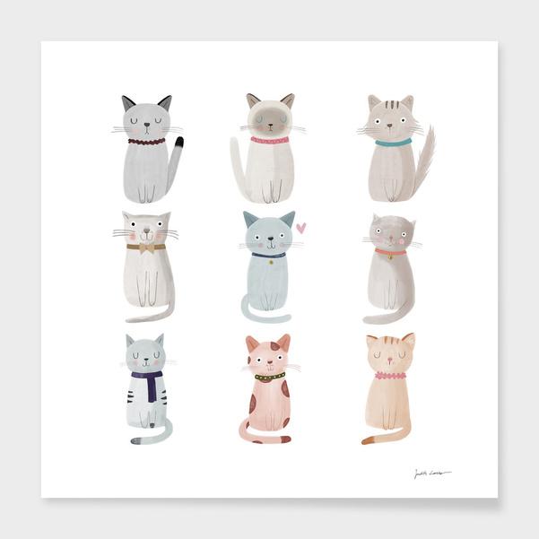 Cat Family main illustration