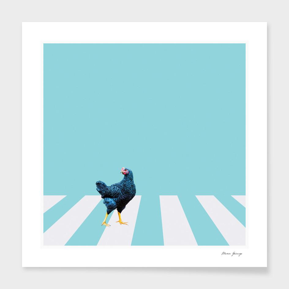 chicken crossing the street main illustration