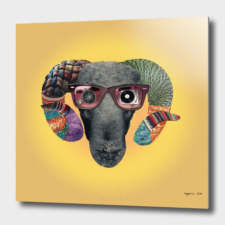 Hipster Sheep main illustration