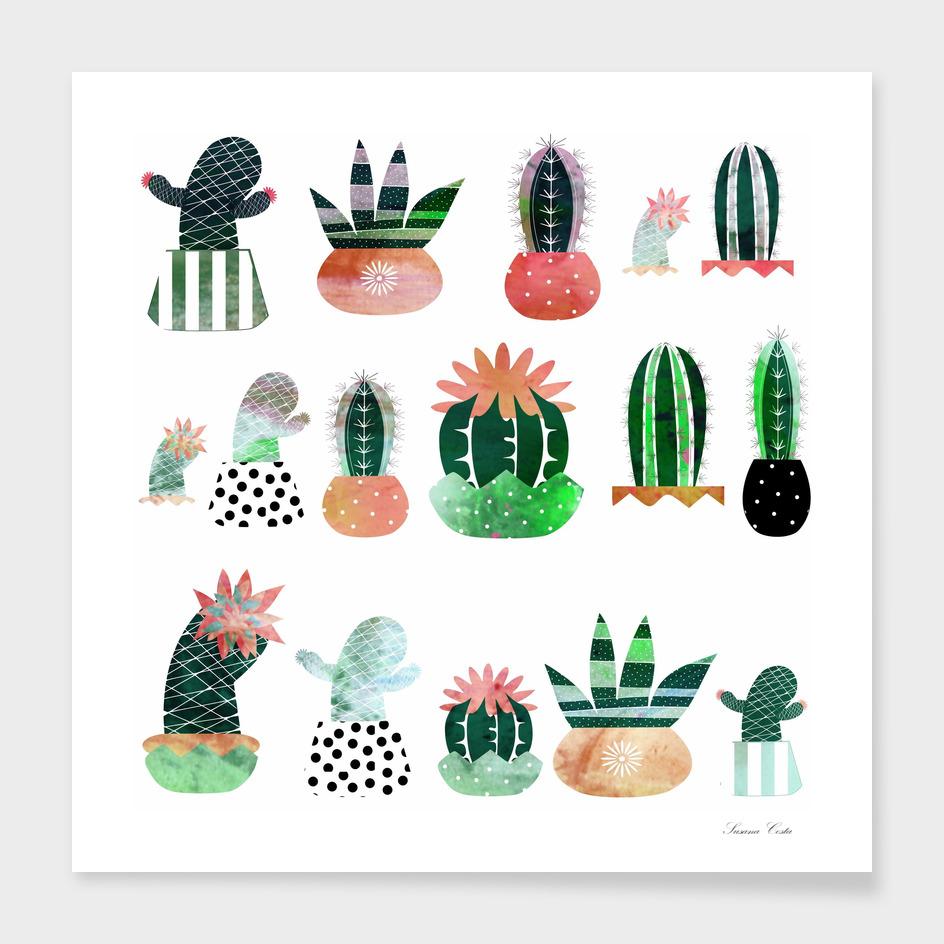 cactus main illustration