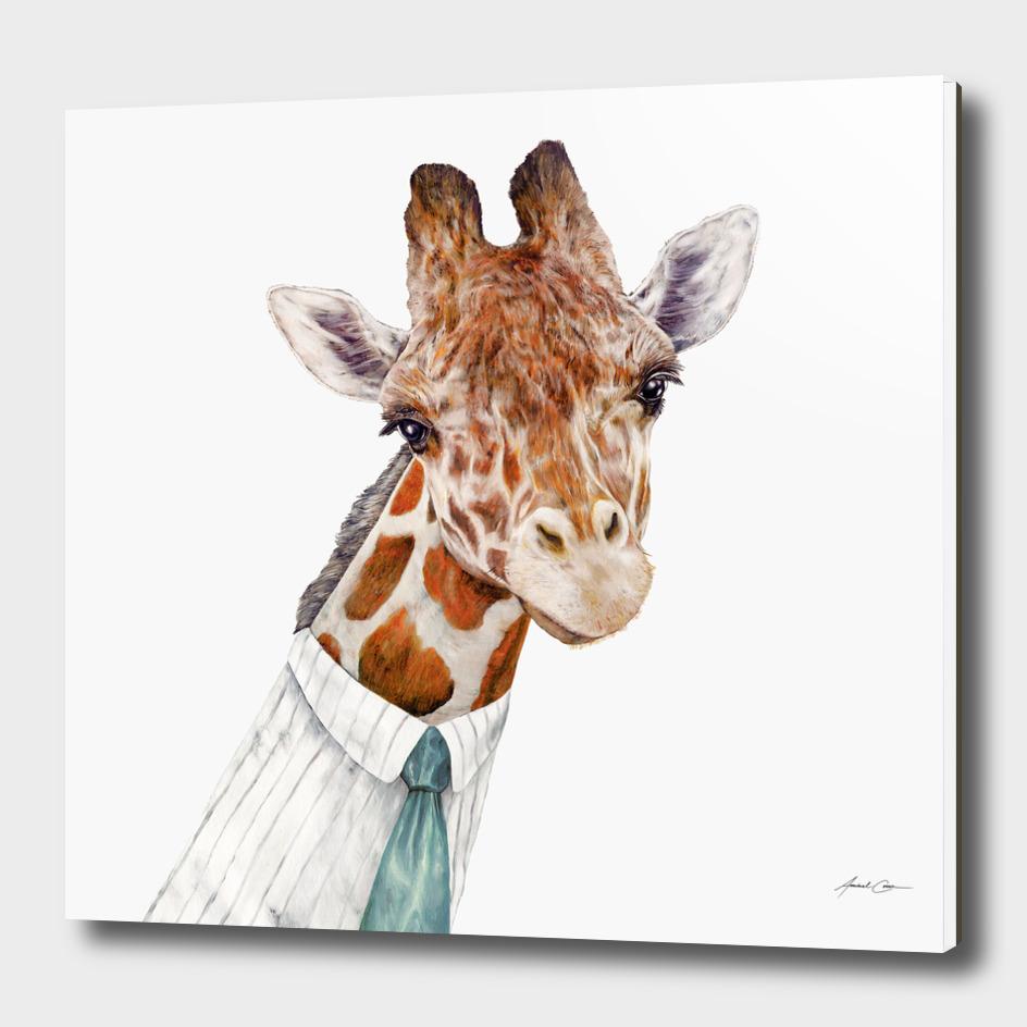 Giraffe main illustration