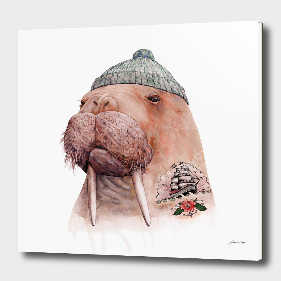 Tattooed Walrus main illustration