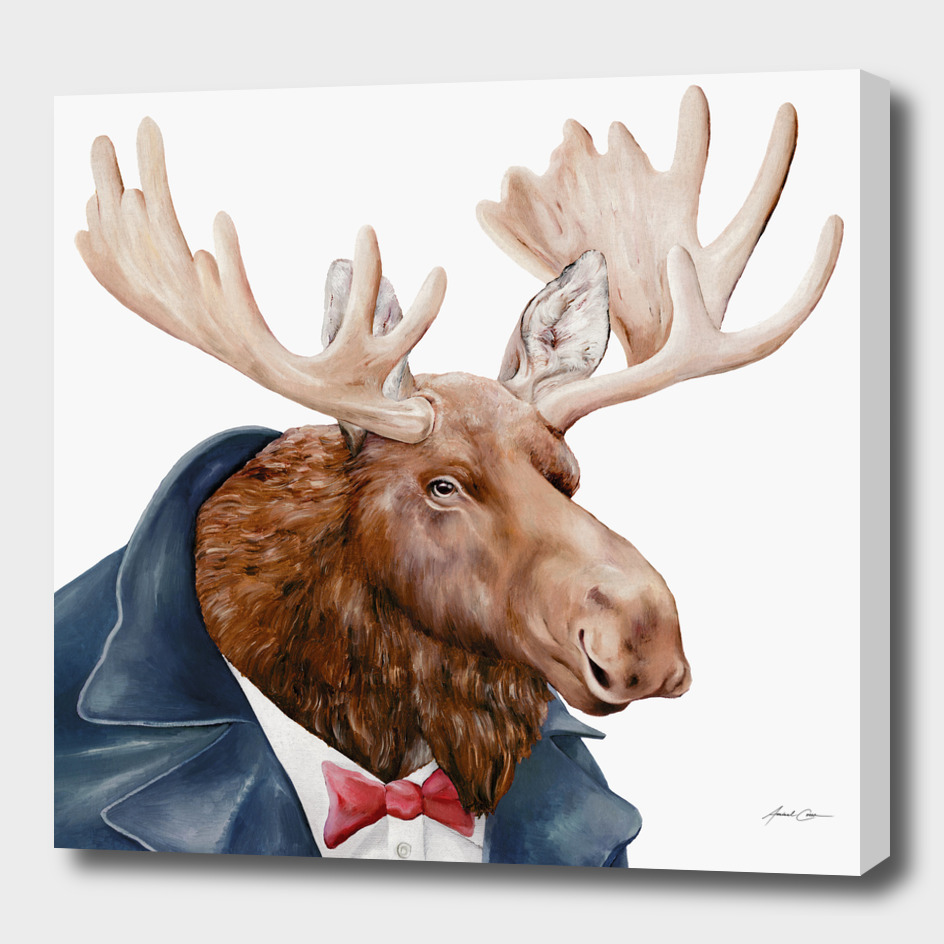 Moose main illustration