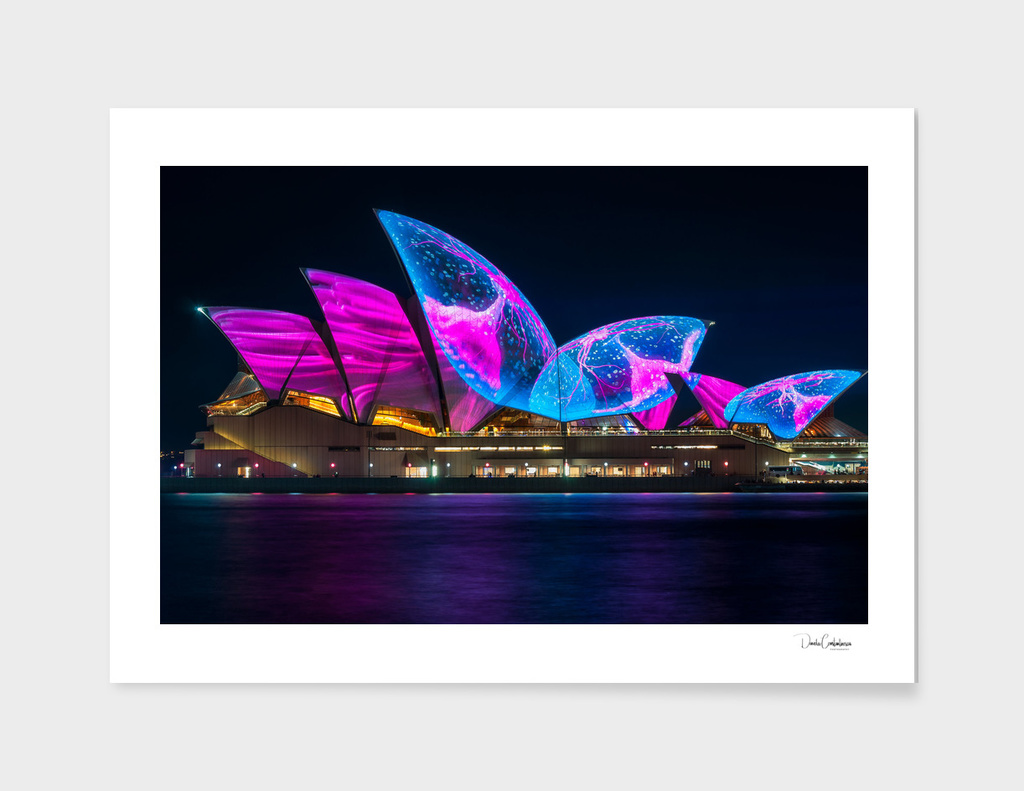 Wonderful new Designs on the Opera House at Vivid Sydney