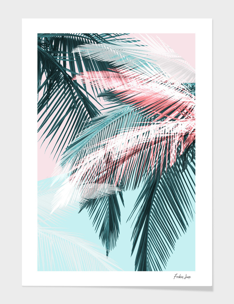 Tropical 01