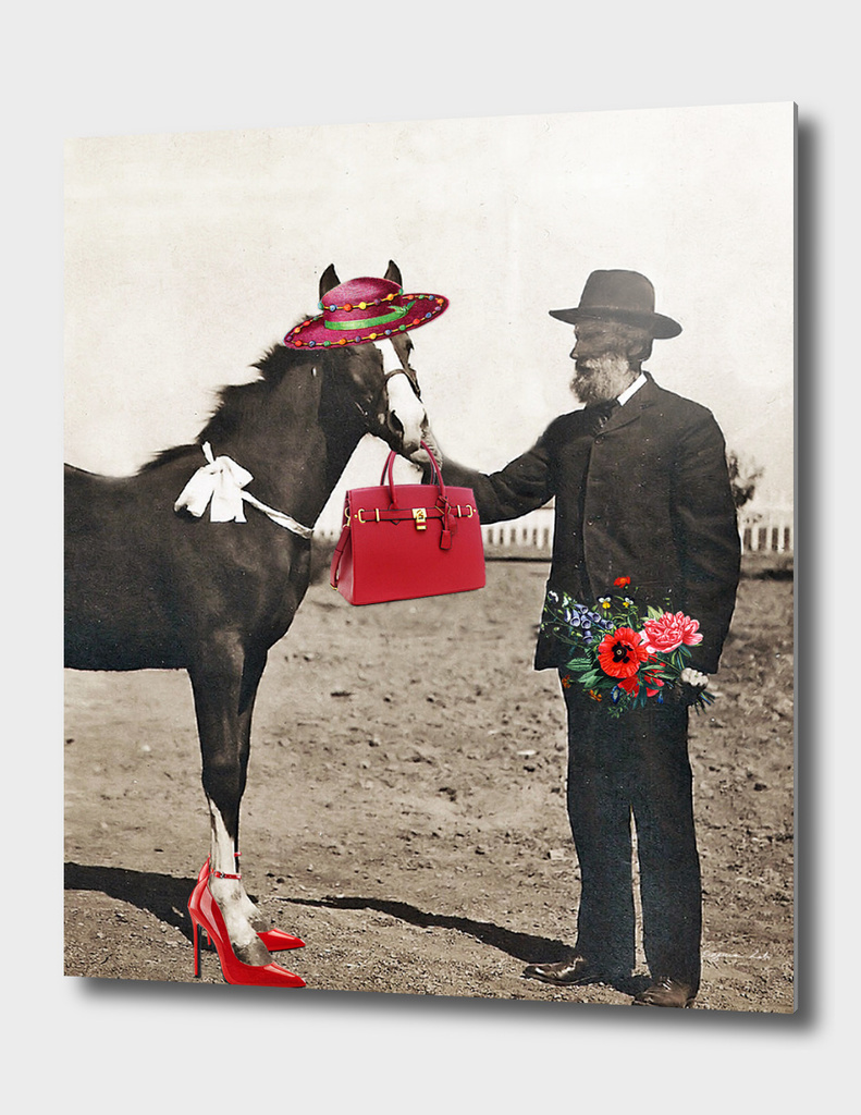 Dating a Horse