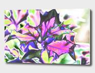 Acrylic Glass Print